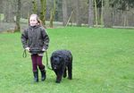 124_enfant_chien_chasse_oeufs_2015.jpg