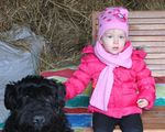 46_enfant_chien_chasse_oeufs_2015.jpg