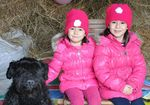 56_enfant_chien_chasse_oeufs_2015.jpg