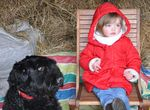 62_enfant_chien_chasse_oeufs_2015.jpg