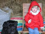 64_enfant_chien_chasse_oeufs_2015.jpg