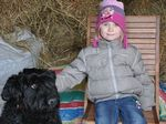 88_enfant_chien_chasse_oeufs_2015.jpg